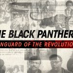 theblackpanthers.com photo 2